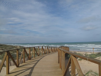 Veintiuna sedes acogen este año los cursos de verano de la Universidad de Murcia