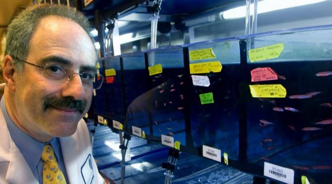 Investidura como doctor honoris causa del investigador de la genética del cáncer Leonard I. Zon