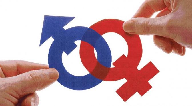 La umu promueve dos becas para formación en igualdad de género