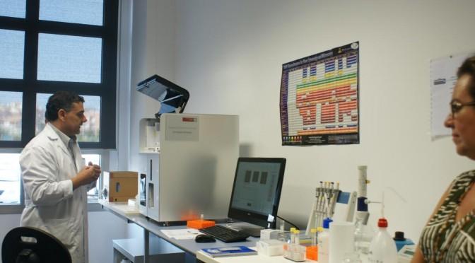 Conceden a la UMU más de 4 millones de euros para 37 proyectos de investigación