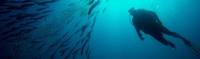 Un curso para afrontar urgencias en el medio acuático en la Universidad del Mar