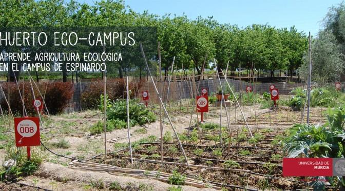El huerto ecológico comunitario de la UMU abre la temporada de la siembra