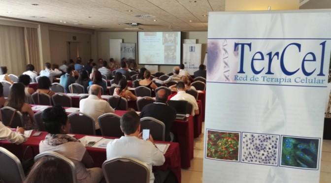 Un curso de la Universidad del Mar difunde las posibilidades terapéuticas de las células madre