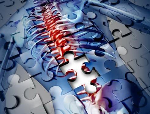 Un curso de Unimar informará sobre los procedimientos en caso de una posible lesión medular en medio acuático