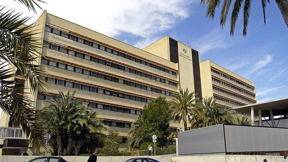 Hospital Elche organiza una Jornada Pre-Mir