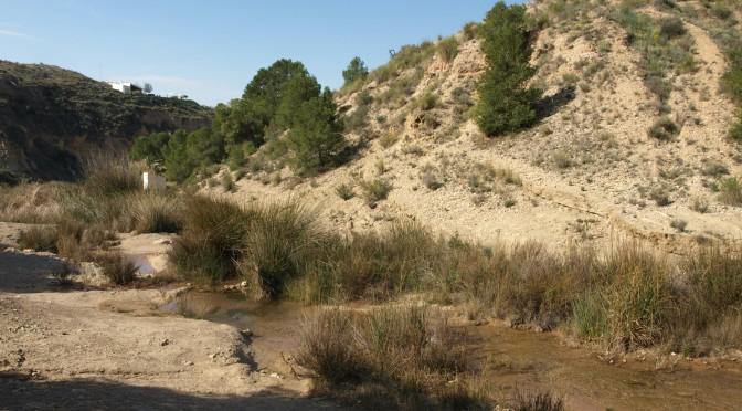 El río Chicamo, un pequeño afluente árido que esconde una gran biodiversidad