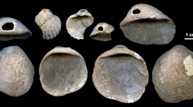 Una investigación publicada en Science Advances atribuye a los neandertales el uso de adornos corporales en conchas