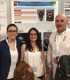 Premio para el trabajo de un grupo de investigación del Hospital Veterinario de la Universidad de Murcia