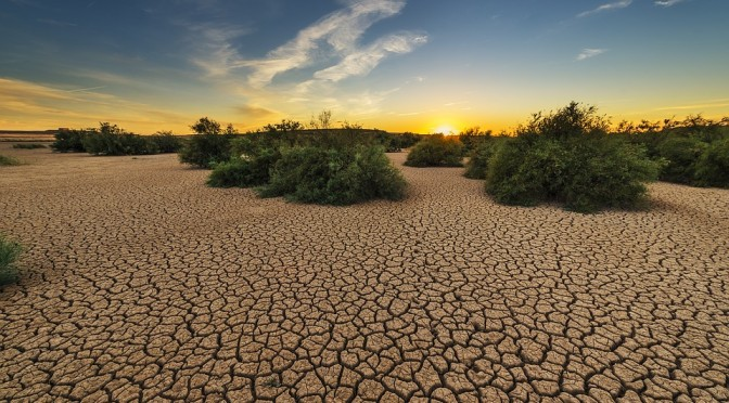 La Región de Murcia  es una de las zonas con más riesgo de desertificación de Europa