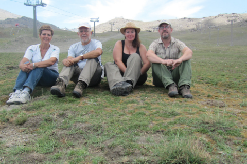 Ceratodon amazonum, una especie nueva de musgo que destaca por la ausencia de machos
