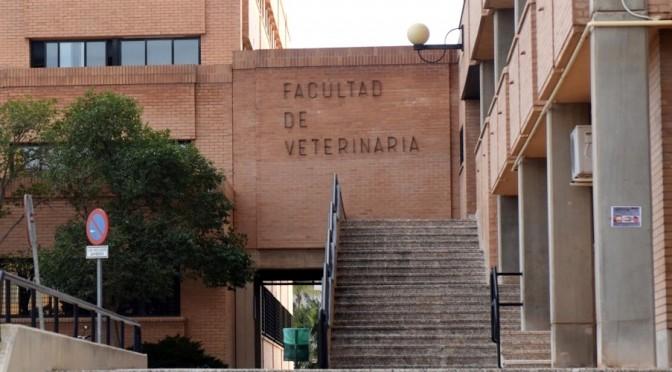 El grado en Veterinaria de la Universidad de Murcia renueva la acreditación internacional de la EAEVE