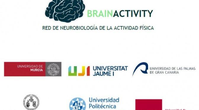 La Universidad de Murcia coordinará la red 'BrainActivity' en Neurobiología del ejercicio