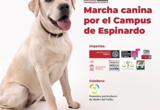 La Universidad de Murcia organiza una marcha canina por el campus de Espinardo