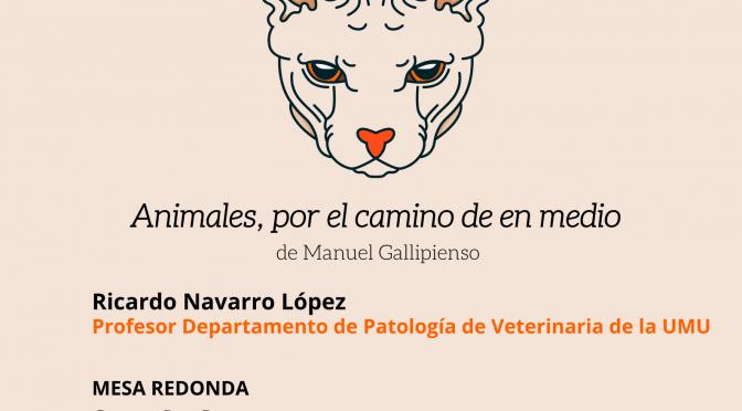 La UMU reflexiona sobre las colonias de felinos en Murcia