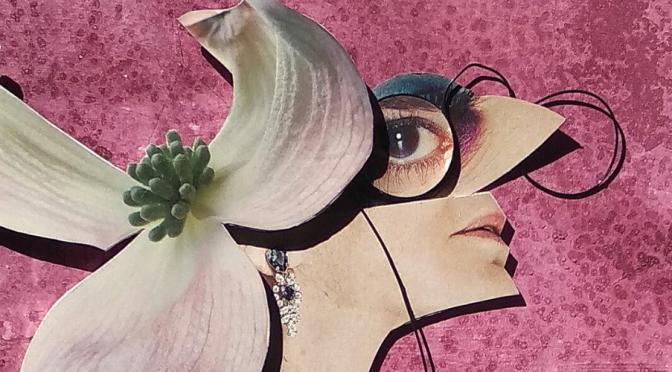 La UMU reflexiona sobre el papel del collage dentro del discurso pictórico