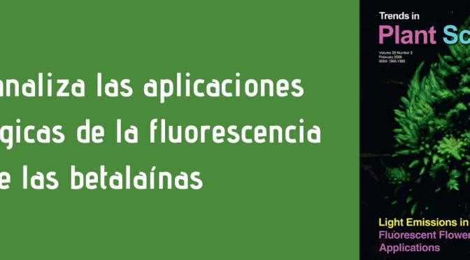 La Universidad de Murcia analiza las aplicaciones biotecnológicas de la fluorescencia en pigmentos vegetales
