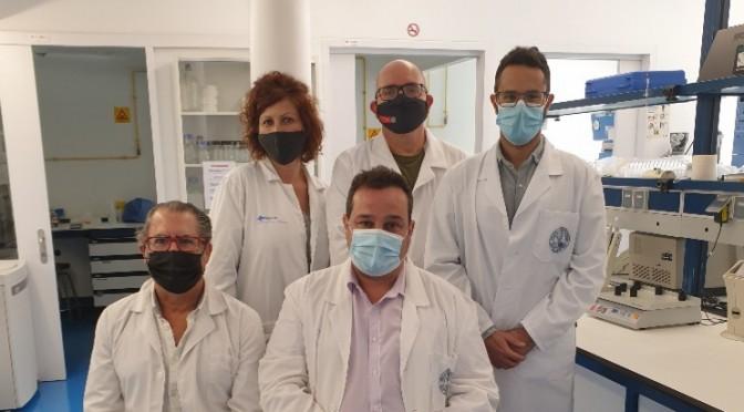 Investigadores de la UMU implantan exitosamente un nuevo tipo de lengua en roedores