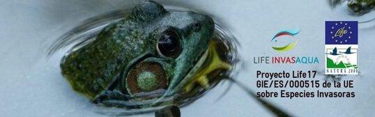 La UMU convoca un concurso para premiar los mejores trabajos de fin de grado y máster sobre especies invasoras