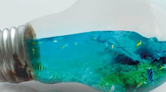 V Edición Premios Cátedra del Agua y la Sostenibilidad a los Mejores TFM