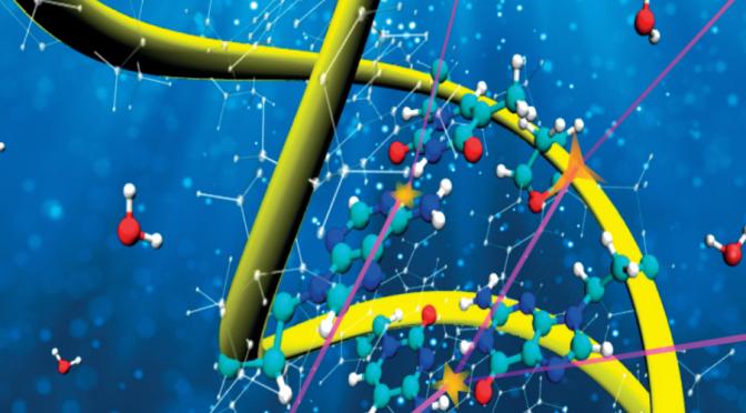 La UMU desarrolla modelos físicos más precisos para describir el dañado del ADN durante terapias contra el cáncer