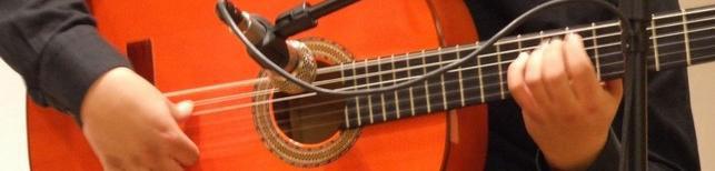 Revista de Investigación sobre Flamenco